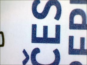 ZP 31